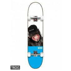 Tabla Skate Completa Tricks Hater 7.75