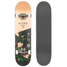 Tabla Skate Completa Globe G1 Insignia 7.7''